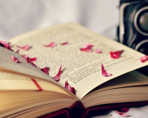 Cele Mai Frumoase Carti De Dragoste Din Toate Timpurile